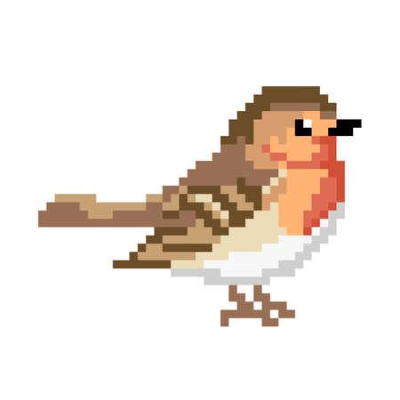 Pinch bird. Pixel Pinch bird image. Vector Illustration of pixel art.