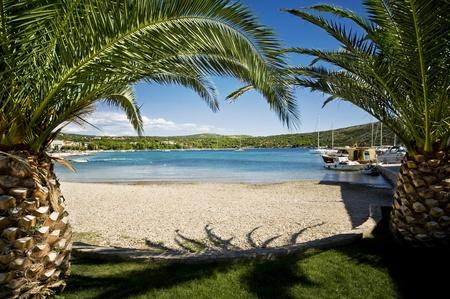 two palm trees on the beach, primosten croatia Stock Photo