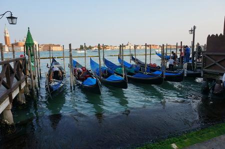 waterbus: Row of gondolas at Venice