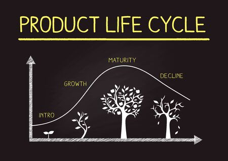 Hand Drawing product life cycle image on blackboard,business@flamework
