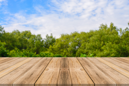 Wooden board empty table in front of blurred background. Perspective brown wood over blur trees in forest - can be used for display or montage your products. spring season. vintage filtered image. 写真素材
