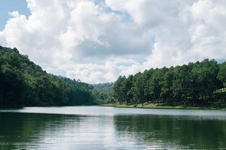 jezior: Lake Forest pod Błękit nieba. Jezioro Pang-Ung w Maehongson, Tajlandia. odbicie drzewa sosnowego w jeziorze. Vintage efekt filtra