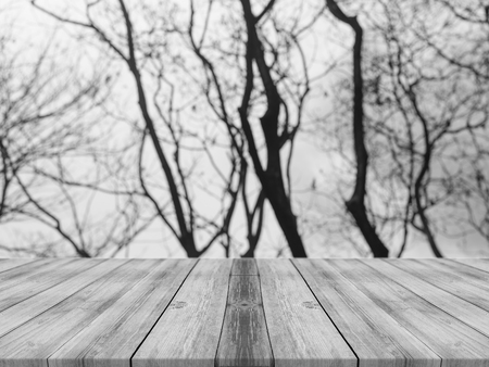forest products: Wooden board empty table in front of blurred background. Perspective grey wood over blur trees in forest - can be used for display or montage your products. spring season. vintage filtered image.