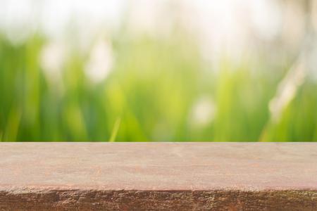 tablero de piedra cuadro vacío delante de fondo borroso. Perspectiva de roca de color marrón sobre los árboles de la falta de definición en el bosque - se puede utilizar para la visualización o Montage sus productos. temporada de primavera. Vintage imagen filtrada.