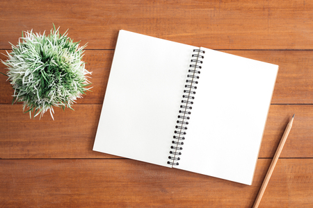 Minimal work space - Creative flat lay photo of workspace desk. White office desk wooden table background with open mock up notebooks and pens and plant. Top view with copy space, flat lay photography. Foto de archivo
