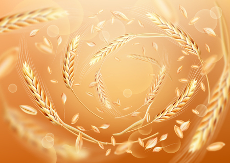 Wheat ears and grains whirl in the air. Wheat in motion on a colored background. Realistic vector illustration for your design.