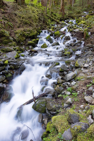 sol duc river: Sol Duc waterfall stream in Olympic National Park.