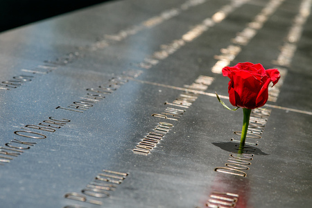 New York, April 28, 2017: A red rose is placed at 911 Memorial in New York City. The memorial commemorates the victims of the terrorist attack. Redakční