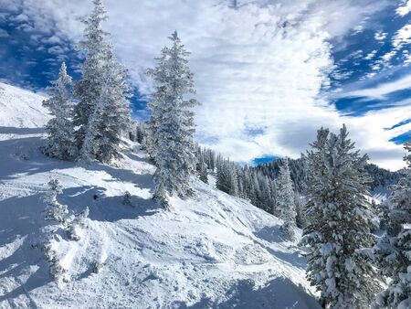 View of the slopes of Alta ski resort in Utah. 免版税图像 - 138243572