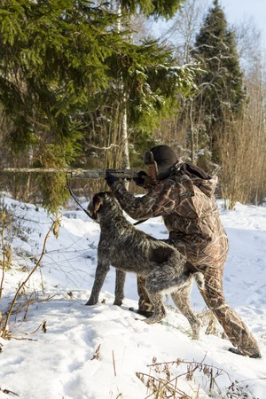 drathaar: Hunter in camouflage aiming. with a dog. vertical shot