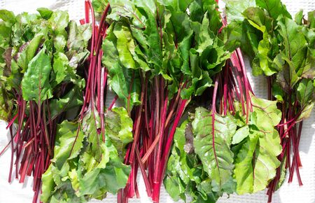 fresh vegetables - beet on the white background 스톡 콘텐츠