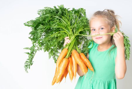 Little preatty 6 years girl with a large armful of carrots with tops. Concept of healthy child nutrition