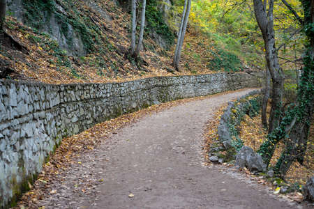 winding road in an autumn landscape between trees Standard-Bild