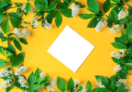 white flowers on yellow background