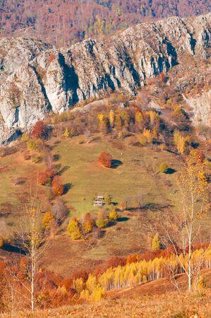 brich: wild country side in autumn