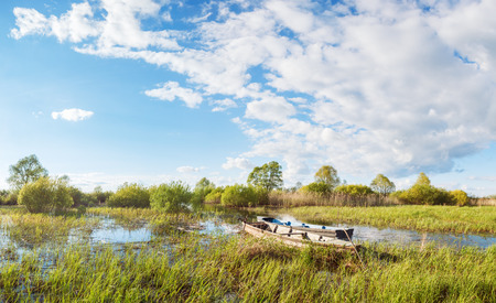 tied in: Two boats are tied in bushes in the channel near Lake Tsevlo in the Pskov region