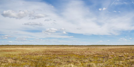 glades: Mounted bog in central Russia