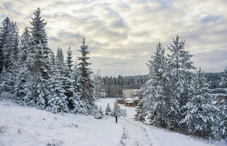 Mountain park in winter in Karelia, Russia Imagens