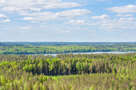 Forest open space and Lake Janisjarvi near Lynx mountain in Karelia, Russia