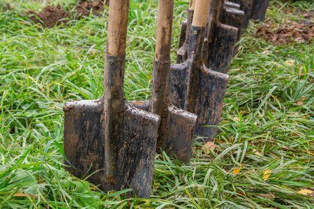 Dirty shovels on green grass Фото со стока