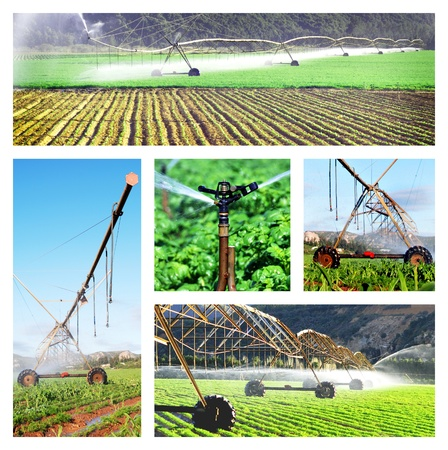sprinklers: Collage of irrigation images