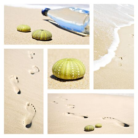 Collage of beach scenes with footprints and sea urchin shells photo