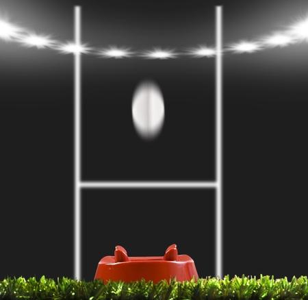 pelota de rugby: Pelota de rugby pateó con los puestos de trabajo en un campo de rugby Foto de archivo