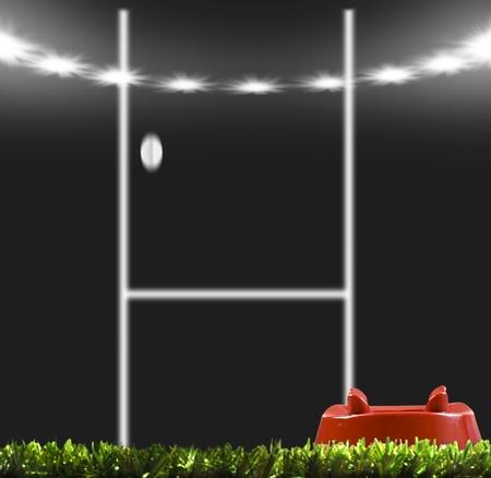 pelota rugby: Pelota de rugby pate� con los puestos de trabajo en un campo de rugby Foto de archivo