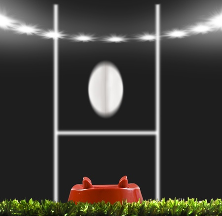 Rugby ball kicked to the posts on a rugby field photo