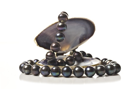 string of pearls: String of black pearls in a sea shell on white
