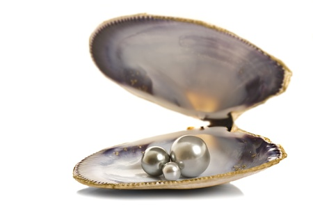 Beautiful pearls in a shell on pure white background Standard-Bild