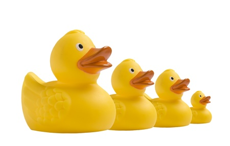 rubber  duck: Amarillo patito de juguete sobre fondo blanco Foto de archivo