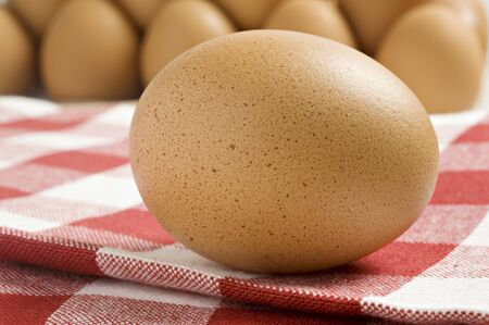 Fresh healthy organic egg photo