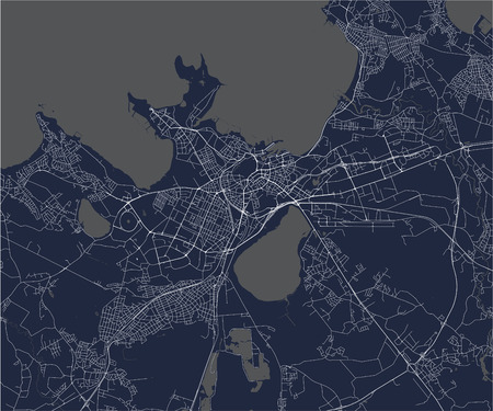 vector map of the city of Tallinn, Estonia Ilustrace