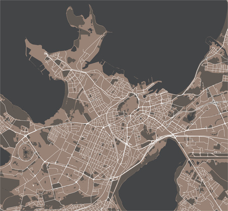 vector map of the city of Tallinn, Estonia Çizim
