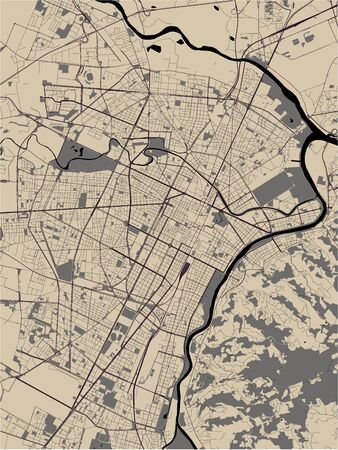 vector map of the city of Torino, Turin, Italy
