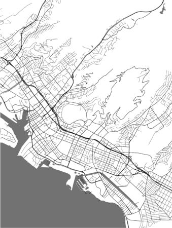 vector map of the city of Honolulu, Hawaii, United States America  イラスト・ベクター素材