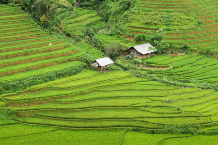 Beautiful landscape Green Terraced Rice Field in Mu cang chai, Vietnam Stock Photo