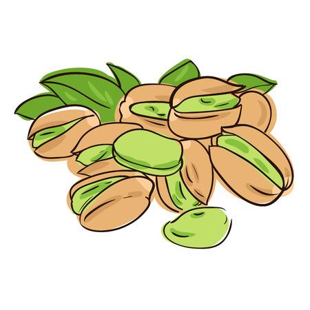 pistachios: vector illustration of pistachios in doodle style
