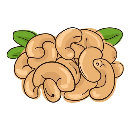 nutty: vector illustration with a handful of cashew nuts