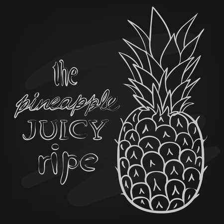 pineapple:  illustration ripe juicy pineapple style doodle art on the chalkboard Illustration