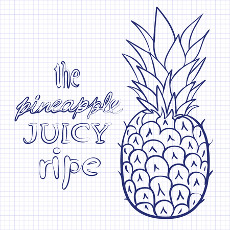 illustration ripe juicy pineapple style doodle art on paper