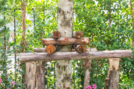 The wooden stakes are used to brace the trees that have been moved for stability.