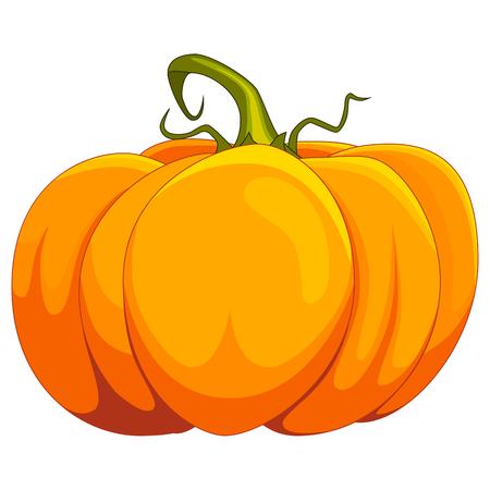 Cartoon pumpkin vector illustration, isolated on white background Illustration