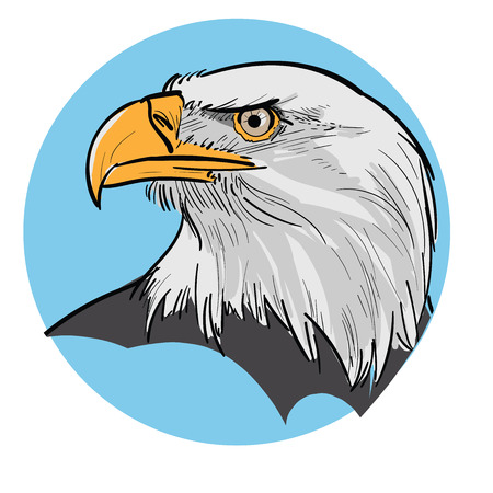Eagle Head. Illustration on blue background.