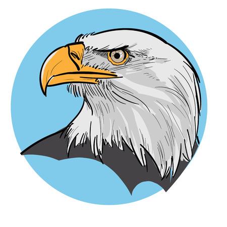 Eagle Head. Illustration on blue background.
