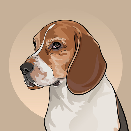 Cartoon Dog Head. Dog of the Beagle breed