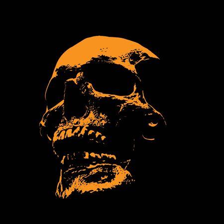 Scull portrait silhouette in contrast backlight.