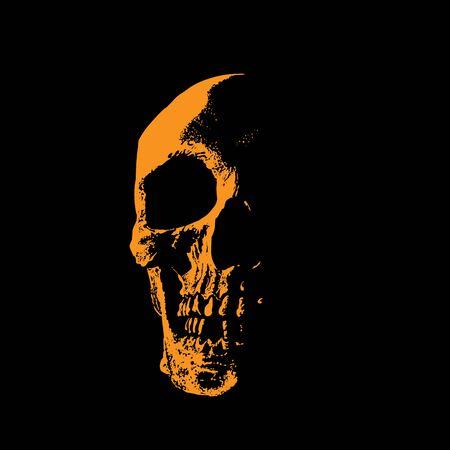 Skull portrait silhouette in contrast backlight. Ilustração