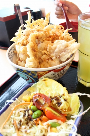 japanese food in the bowl, pork tempura  photo
